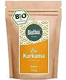 Curcuma in polvere BIO - 250g - radice di curcuma preziosa - lat. curcumin - busta richiudibile - confezionato in Germania (DE-ÖKO-005)